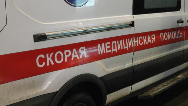 Под Бокситогорском в ДТП с автобусом погибли 4 человека