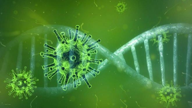 В России зафиксировано 5395 новых случаев заражения коронавирусом