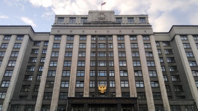 Жириновский внесет в Госдуму законопроект о конфискации автомобилей у нарушителей ПДД