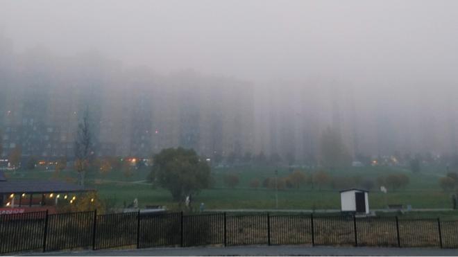 МЧС предупредило петербуржцев о тумане в четверг