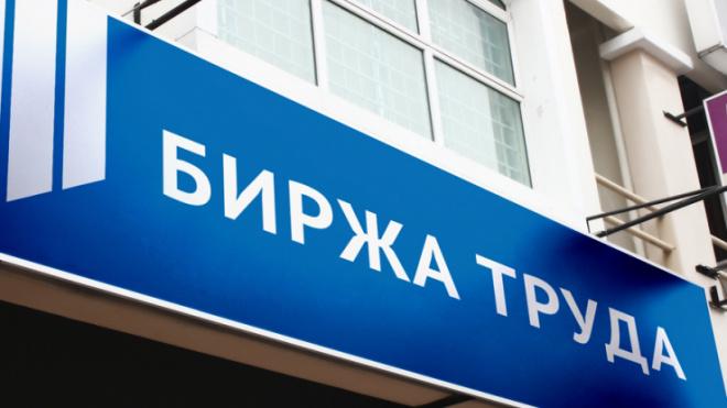 Биржа труда Ленобласти выплатила 16,2 миллиона рублей безработных и самозанятым