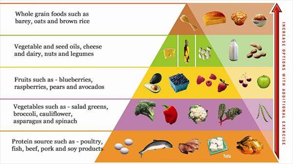 Gout Attack: Atkins Diet Yes or No Atkins-food-pyramid3