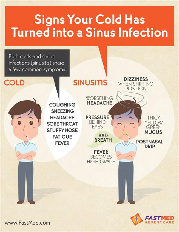 Persistent Sinus Infection and Sinus Infection Signs  Cold-to-Sinusitis6
