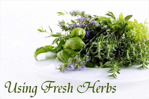 Bronchitis and Using Herbs Fresh-Herbs