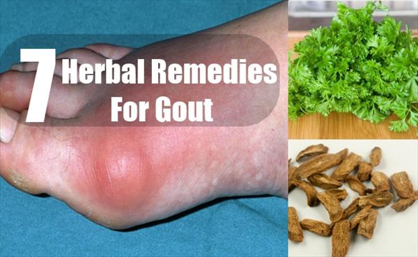 Foods are Considered Low Purine: Natural Gout Treatment: Herbal-Remedies-For-Gout71