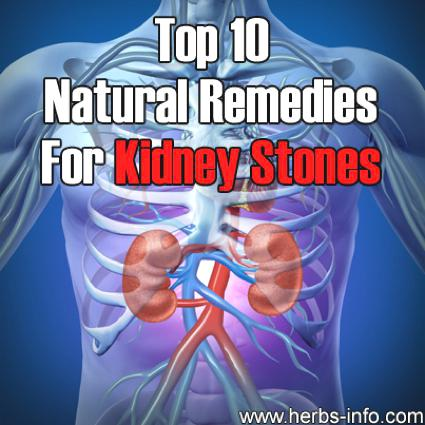 Stop Gout Pain Herbal-Remedies-For-Kidney-Stones