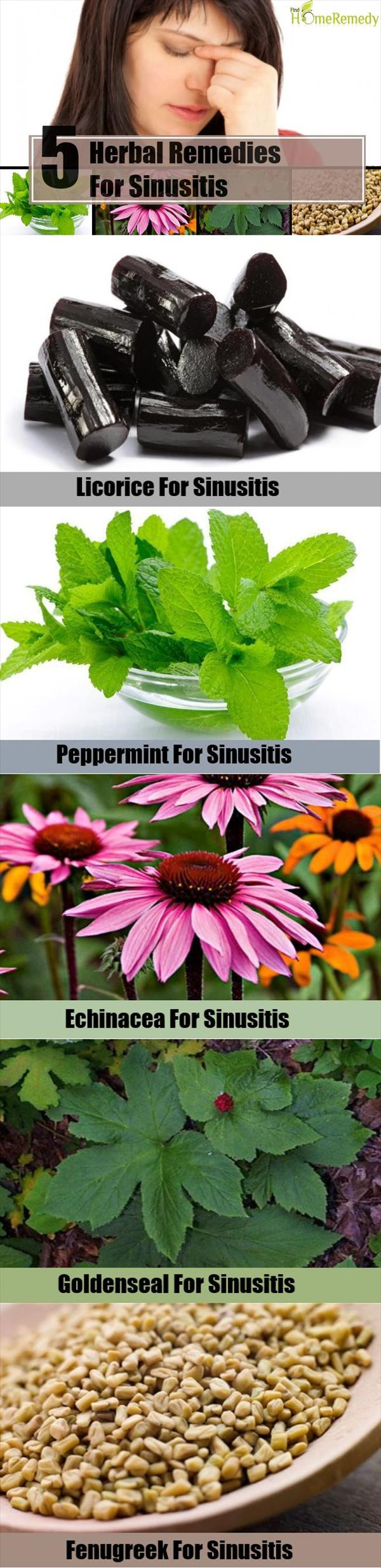 Sinusitis Herbal Remedy: Say L8rs In Order To Sinusitis Along With Balloon Sinuplasty Herbal-Remedies-For-Sinusitis