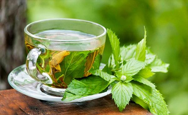 Purines, Cherries as an Effective Natural Remedy for Gout Herbal-Tea-Of-Black-Currant-Leaf