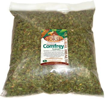 Bronchitis: Comfrey Leaf is an Effective Healer NLH-Comfery3