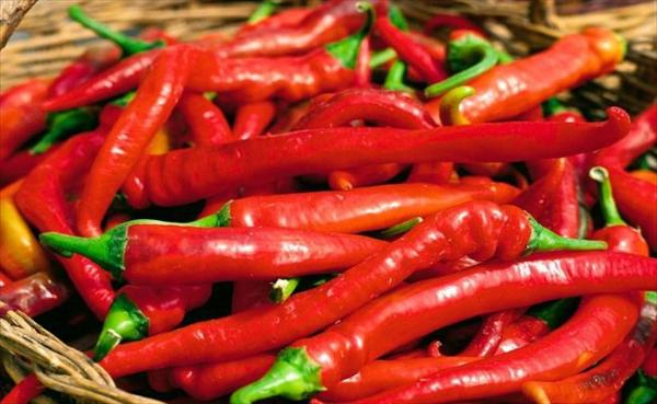 Sinus Virus: Kill With Natural Remedy Pepper