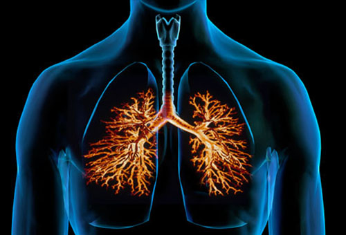 Bronchitis Acute: Bronchitis Signs: How to Identify Them Signs-of-Bronchitis5