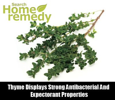 Useful Herbs for Sinusitis Relief Thyme9