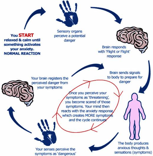 Inflammatory Paranasal Sinuses Disease. Deal With Anxiety-cycle