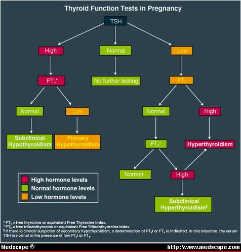 Uric Acid in Pregnant Females and Grieving With Gout:  How Art-wh-fig
