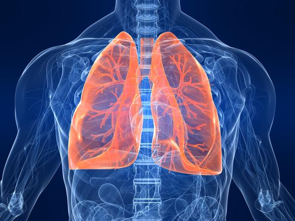 Important Facts about Asthmatic Bronchitis Bronchitis739