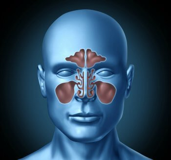 Sinus Problem: Sinus Infection- a Serious Problem Chronic-sinus-infection-remedy5