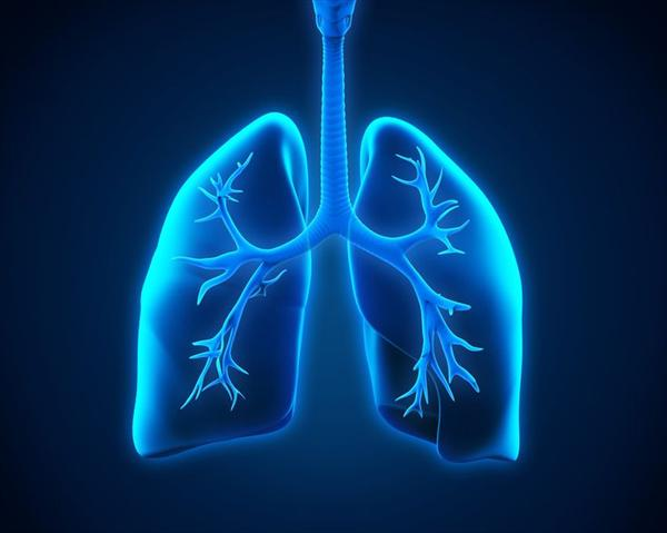 Cure Bronchitis Naturally, Bronchitis and Natural Cures D-d-a-c-dadae-b-d-e-ff