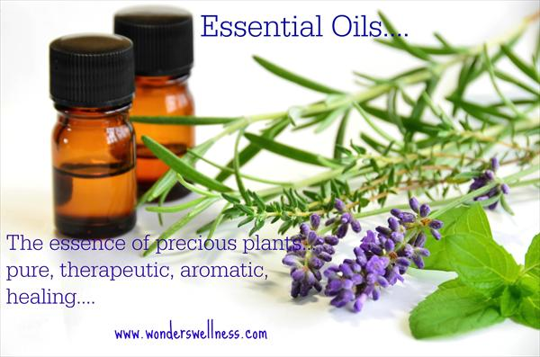 [Image: essential-oils-plants-promo.jpeg]