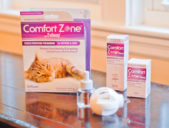 Recipe Pheromones and 4 Common Concerns about Scent Feliway-review