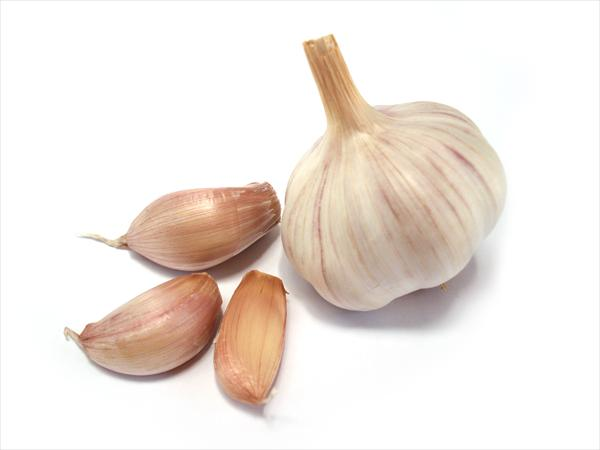 [Image: garlic21.jpeg]