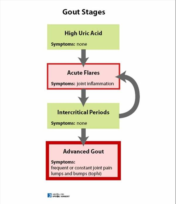 Normal Uric Acid Levels: Nutritional Therapy a Natural Cure Gout-Bstages