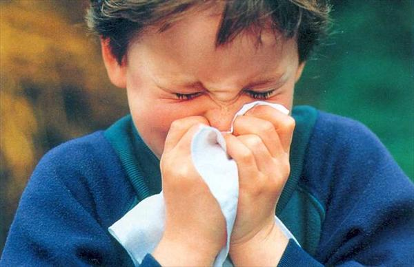 Dizziness and Sinus Problems. Beneficial Devices to Prevent Sinusitis62