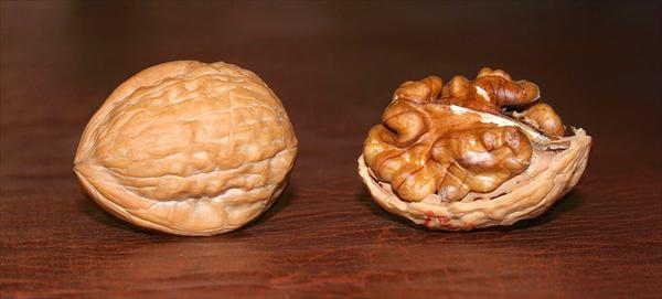 Passed Kidney Stones: Turn to Diet for Everyday Ailments Walnuts3