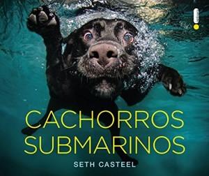 Baixar Cachorros submarinos pdf, epub, eBook