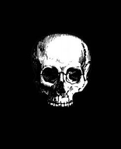 Baixar maze morte; você pode sobreviver? pdf, epub, eBook