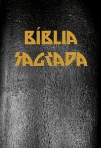 Baixar A Bíblia Sagrada Completa com Índice Ativo e Touch, na nova Ortografia da Língua Portuguesa na Tradução de João Ferreira de Almeida pdf, epub, eBook
