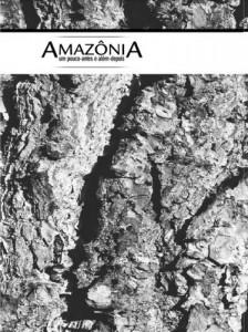 Baixar Amazônia – Um pouco antes e além depois pdf, epub, eBook