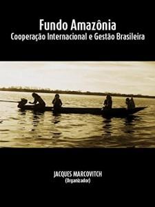 Baixar Fundo Amazônia: cooperação internacional e gestão brasileira pdf, epub, eBook