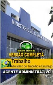 Baixar Preparatório – Concurso Ministério do Trabalho e Emprego (MTE) Agente Administrativo – Versão Completa pdf, epub, ebook