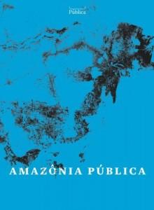 Baixar Amazônia Pública pdf, epub, eBook