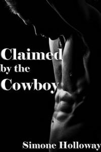 Baixar Possuído Pelo Cowboy (Luxúria Proibida 1) pdf, epub, ebook