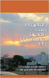 Baixar Grandes Projetos com Oracle Primavera P6: Utilização em projetos de grande dimensão pdf, epub, ebook