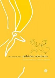 Baixar Pedrinhas miudinhas: Ensaios sobre ruas, aldeias e terreiros pdf, epub, ebook