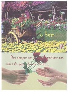 Baixar O BEM ATRAI O BEM: Fica sempre um pouco de perfume nas mãos de quem oferece flores pdf, epub, eBook
