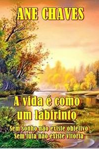 Baixar A VIDA É COMO UM LABIRINTO – Sem sonho não existe objetivo, sem luta não existe vitória. pdf, epub, ebook