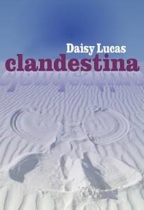 Baixar Clandestina pdf, epub, ebook