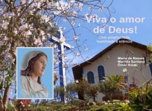 Baixar Viva o amor de Deus!: Com simplicidade, humildade e silêncio pdf, epub, ebook