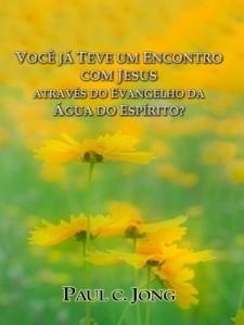 Baixar VOCÊ JÁ TEVE UM ENCONTRO COM JESUS ATRAVÉS DO EVANGELHO DA ÁGUA DO ESPÍRITO? pdf, epub, eBook