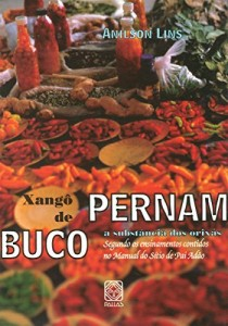 Baixar Xangô de Pernambuco: a substância dos orixás segundo os ensinamentos contidos no manual do Sítio de Pai Adão pdf, epub, eBook