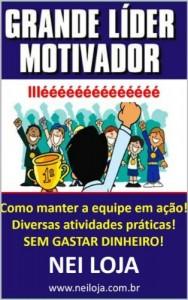 Baixar GRANDE LÍDER MOTIVADOR pdf, epub, ebook