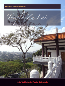 Baixar Templo Zu Lai: Ensaio Fotográfico pdf, epub, ebook