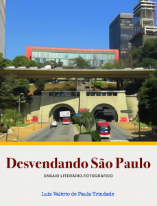 Baixar Desvendando São Paulo: Ensaio Literário-Fotográfico pdf, epub, eBook