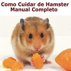 Hamster_Capa