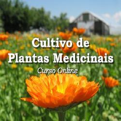 Baixar Cultivo de Plantas Medicinais pdf, epub, ebook