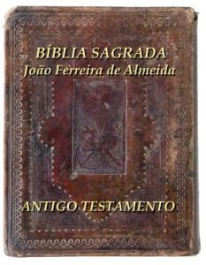 Baixar Bíblia Sagrada João Ferreira de Almeida pdf, epub, eBook