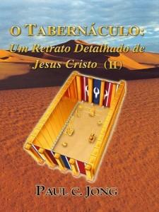 Baixar O Tabernáculo: Um Retrato Detalhado de Jesus Cristo (II) pdf, epub, eBook